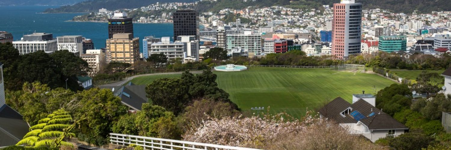 Panoramic view of Wellington, New Zealand